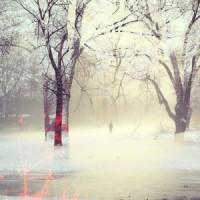 ARTIST OF THE WEEK-    Embers In Snow