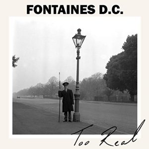 9. FONTAINES D.C.
